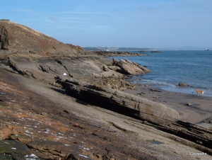 Kinghorn Fife - Geowalks Geology Walking Holidays