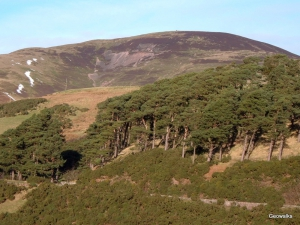 Pentland Hills - Geowalks Geology Walking Holidays